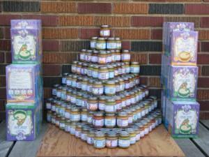 Baby Food Pyramid